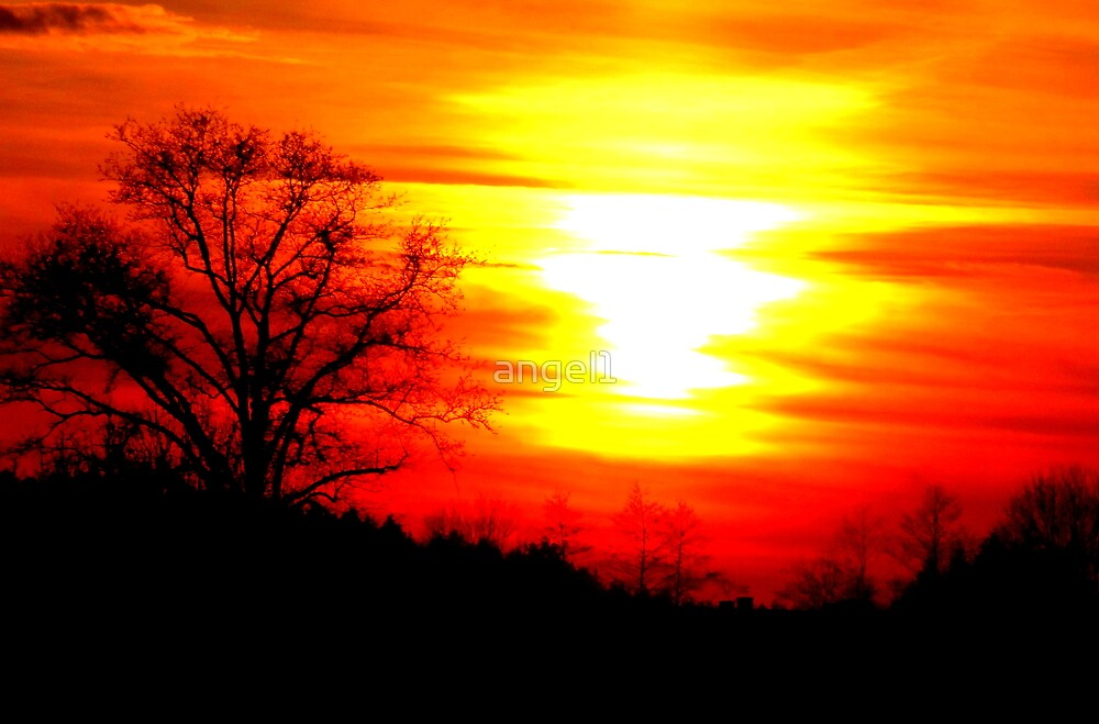 Amazing Sunset by ©The Creative  Minds