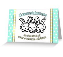 Congratulations on the birth of your triplets! Greeting Card