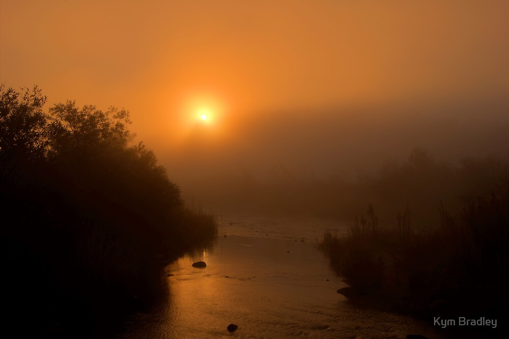 Golden Sunrise with the fog  Canberra Australia  by Kym Bradley