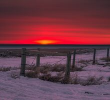 Prairie Perfection 2115_2013 by Ian McGregor