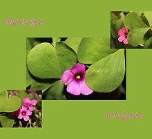 Hide and Seek in the Garden by aprilann