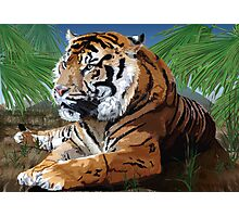Tiger Scene Photographic Print