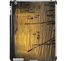 On Golden Pond iPad Case/Skin