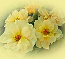 Softly and Sweetly by MotherNature2