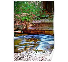 Trout Brook Poster