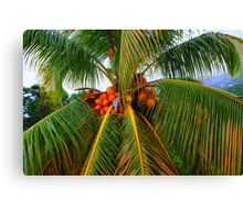 Palm palm palm. Canvas Print