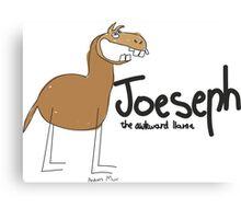JOESEPH- the awkward llama Canvas Print