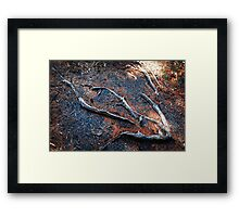Root 4 Rectangle Framed Print