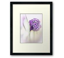 .com Framed Print