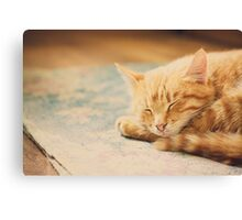 Little Red Kitten Sleeping On Bed Canvas Print