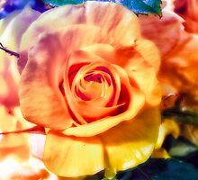 Colorful Bouquet by Mauves
