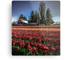Barns And Blossoms Metal Print