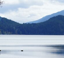 Lake Crescent by Loisb