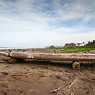 Ecuadorian Fishing Raft - Color by Paul Wolf