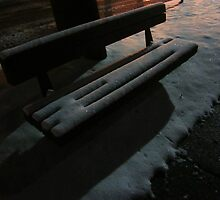 The Empty Park Bench by Guy Ricketts