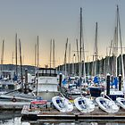 Nanaimo Yacht Club by Trish  Hooker