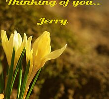 Thinking of you Jerry..(Aka) Zpawpaw by jeanlphotos