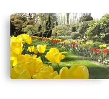 April Tulip Gardens Metal Print
