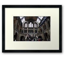 Inside the Natural History Museum in London Framed Print