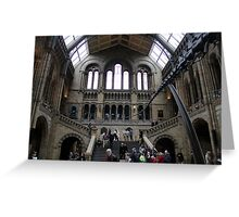 Inside the Natural History Museum in London Greeting Card