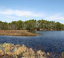 Beautiful Pond of New England by joycemlheureux