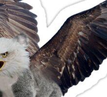 Ameristralia Eaglekoala (#2) Sticker