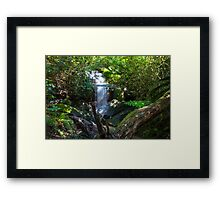 Irrawong Reserve Waterfall Framed Print