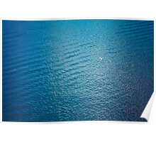 White Seagull Flying Over Deep Blue Waves Poster