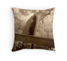 Old Hollow Tree By Bridge, Ringwood Manor Property Throw Pillow