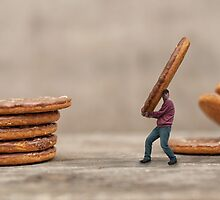 Taking the Biscuit by Dave Flynn