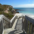 Shell Beach Walkway by Kay Cunningham
