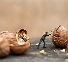 Nut Cracker by Dave Flynn