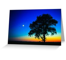 Sunset With A Silhouette Of A Lonely Tree Greeting Card