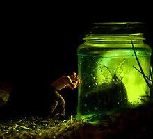 Fairy Fantasy by Dave Flynn
