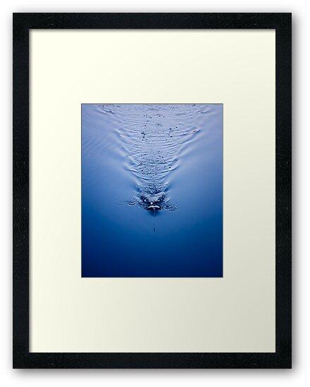 An Image Of A Fishing Bob In The Water by GrishkaBruev