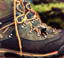 Climbing Boots by Dave Flynn