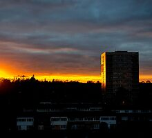 Tower Block by Barry Robinson