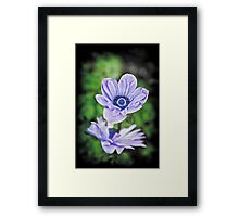 Pale Blue Flowers Framed Print
