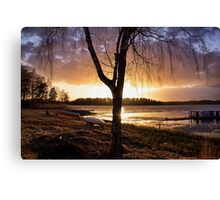 Burnished copper Canvas Print