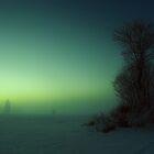 Den iskalla Vargtimmen by Daniel Gudmundsson