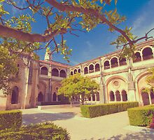 alcobaça monastery cloister. by terezadelpilar~ art & architecture