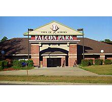 Falcon Park - Auburn Doubledays Photographic Print