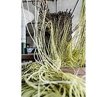 Green Yarn Photographic Print