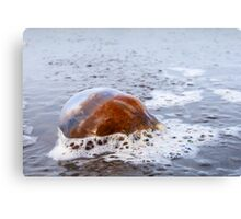 Spilled Jewels  Canvas Print
