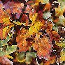 Leaves by Linda Miller Gesualdo