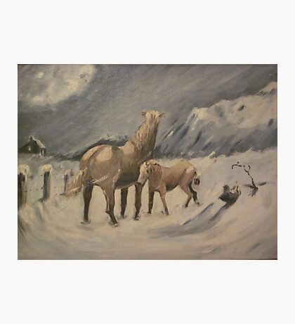 Braving The Elements by Robert Ricketts Photographic Print