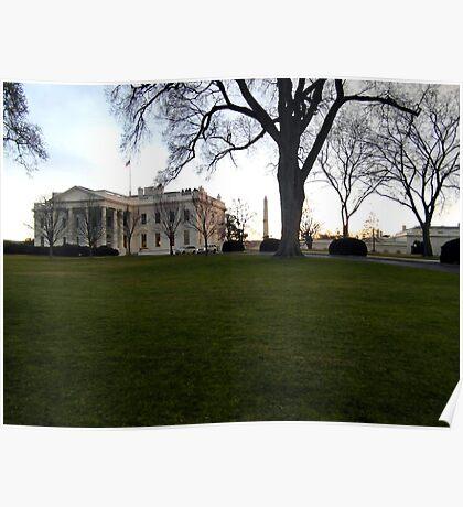 White House Poster