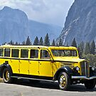 1937 White Touring Bus/Yosemite by DaveKoontz