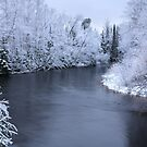 Snow on the Escanaba River by DArthurBrown