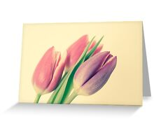 A Touch Of Colour Greeting Card